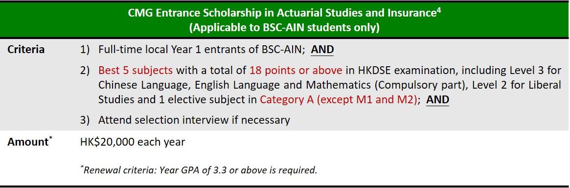 AIN Scholarship EN
